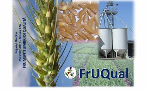 FrUQual